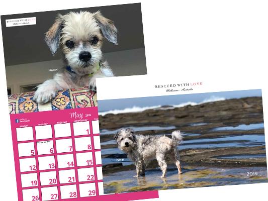 Calendar-Shop-Promo